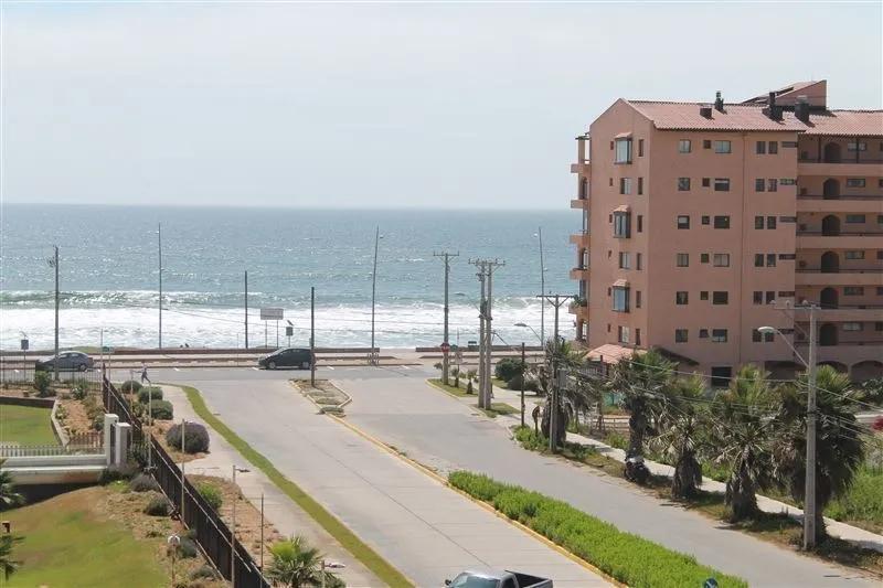 Avenida Del Mar Con Los Nisperos Con Vista Al Mar