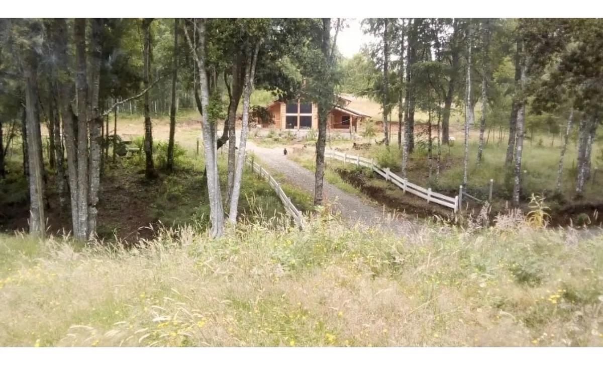 Hermosa Casa En Parcela 2,25 Hectareas Villarrica
